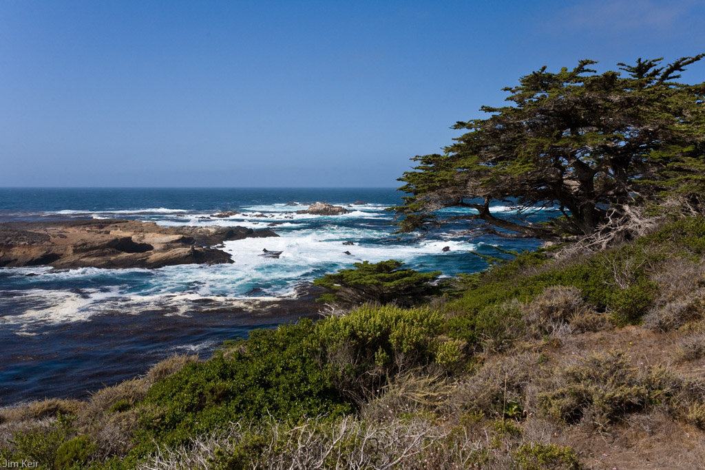 Rugged coastline and breakers off Point Lobos, California